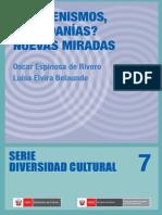 7-Indigenidad en EL PERU