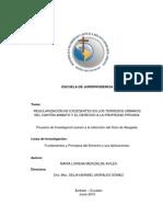Violación del Derecho a la Propiedad Privada Mediante la Regularización de Excedentes de Terreno.