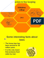 BC1 Bee Life Cycle