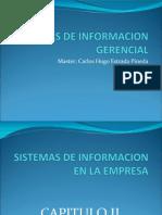 Sistemas de Informacion Gerencial Capitulo II