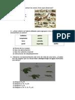 Evaluación Diagnóstica Cs. Naturales PME 2° Básico.docx