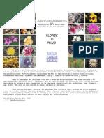 Plantas de la region Puno