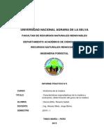 CARACTERISTICAS ORGANOLEPTICAS DE LA MADERA.pdf