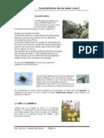 Características de Los Seres Vivos II 2015