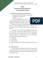 Laporan PSG di PT. PETROKIMIA GRESIK BAB_II_PENJELASAN_UMUM_MENGENAI_PT[1]._PETROKIMIA_GRESIK