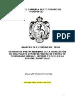 ESTUDIO DE PREFACTIBILIDAD DE LA INSTALACIÓN DE UNA PLANTA DESHIDRATADORA DE FRUTAS DE TEMPORADA