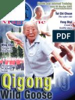 Qi_66v2.pdf