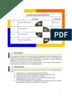 INSTRUCTIVO DEL DERECTOR 2015