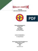 Makalah Anatomi Reproduksi.docx