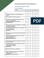 Cuestionario Para Medir Áreas de Impacto Del Síndrome Burnout