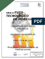 P1 Y P2 Identif y Clasif. De Mins..doc
