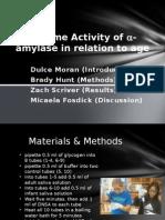 amylase activity a comparison across ages