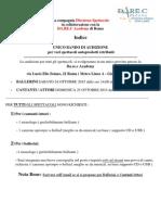 BANDO AUDIZIONE DIREZIONE SPETTACOLO silvia arosio.pdf