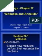 Bio Chapter 27