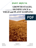 Guide to Determining Growth Stages of Wheat