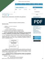 Organizarea Sistemului Conturilor de Gestiune