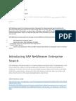 SAP NW Enterprise Search