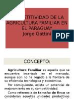 Unidad III Competitividad de La Agricultura Familiar en Py.