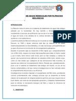 SANEAMIENTO.docx