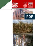 INFORMATIVO CAMPESINO - 247 - OCTUBRE NOVIEMBRE DICIEMBRE 2011 - CDE - PORTALGUARANI