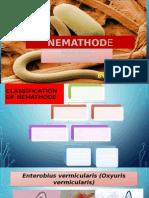 Nematoda Usus Non Soil Kelompok 4