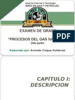 Arnoldo procesos del gas natural