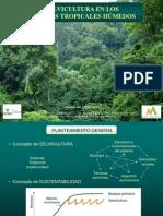 III.- Selvicultura de Bosque Tropical Húmedo