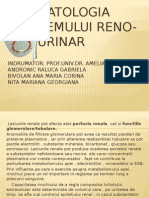 Proiect Fiziopatologie Sistem Reno Urinar