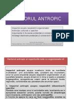 C2-FACTORUL ANTROPIC
