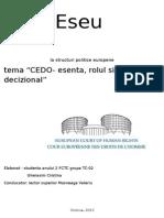 CEDO esenta rolul si procesul decizional