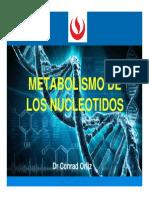 Semana 14A- Metabolsimo de Nucleotidos(2)