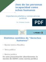 PPT Los Derechos de Las Personas Con Discapacidad Como Derechos Humanos
