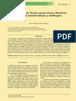 Aceite Foliar de Ocotea Quixos (Lam.) Kosterm.