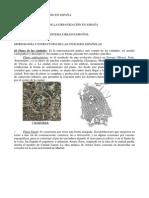 Tema El Sistema Urbano en España