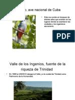 Presentation Trinidad