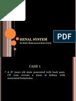 Renal System Mod