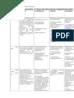Matriz Comparativa 5 Tipos de Estructuras Organizacionales