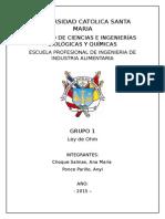 INFORME-FISICA-GRUPAL-1.1.docx