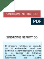 Sd Nefrótico
