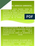 Fuentes Del Derecho Ambiental Diapositivas -Irma