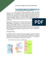 Impacto Humano en El Parque Nacional Podocarpus