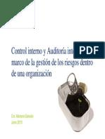 Deloitte Auditoria y Control Interno