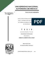 Tesis UNAM Flujo