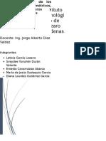 indicadores metricos.docx