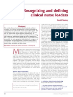 Recognising and Defining Clinical Nurse Leaders