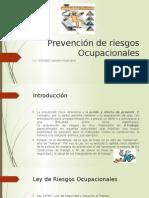 Prevención de Riesgos Ocupacionales