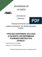 Proceso Enfermero (EPOC)
