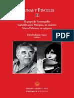 Vol. Amaya Plumas II Copia (1)