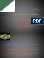 tecnoadicciones monografico