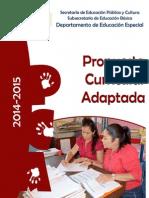 PROPUESTA CURRICUALRA ADAPTADA-2014-2015.docx
